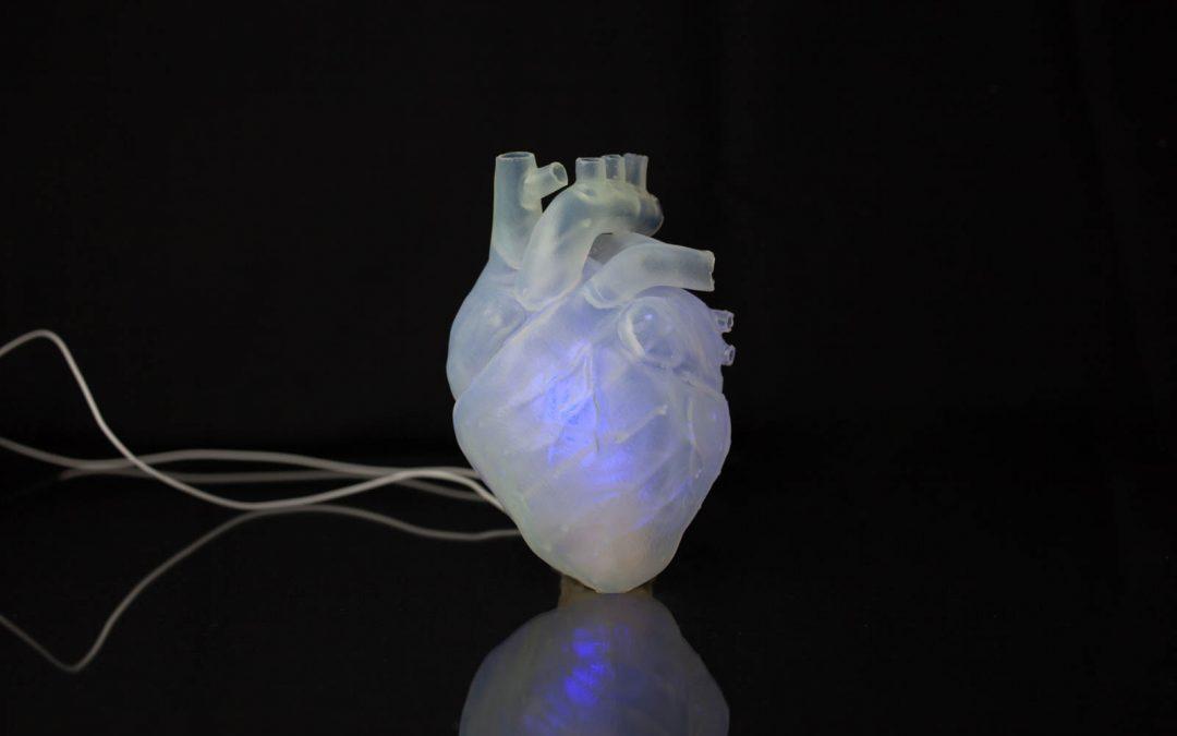 Das schlagende Herz