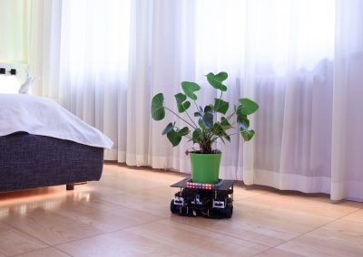Construction of an Artificial Pet in a Smart Home Environment